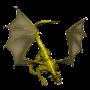 drachenfarbe:gold-schwarz-jugend.png